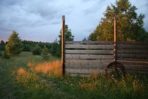 забор на закате